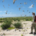 Amateurs and volunteers working and learning alongside professionals in citizen science projects